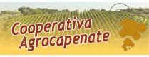 Cooperativa Agrocapenate